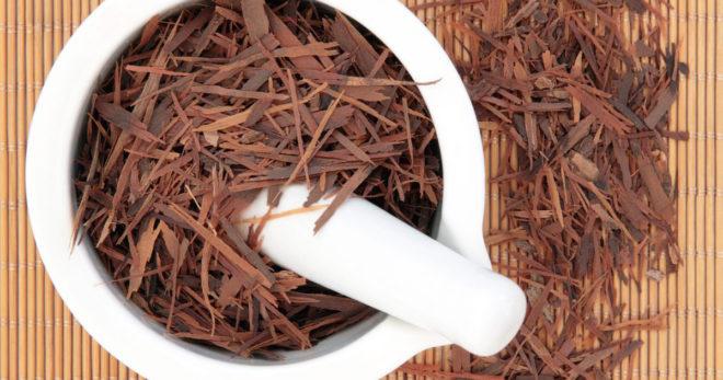 Кора муравьиного дерева в чашке