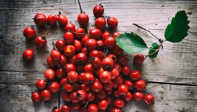 Красный ягоды